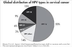 HPV in pregnancy